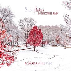 ADR_snowflakes_oli.jpg