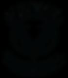 Verve Basketball Academy Logo.png
