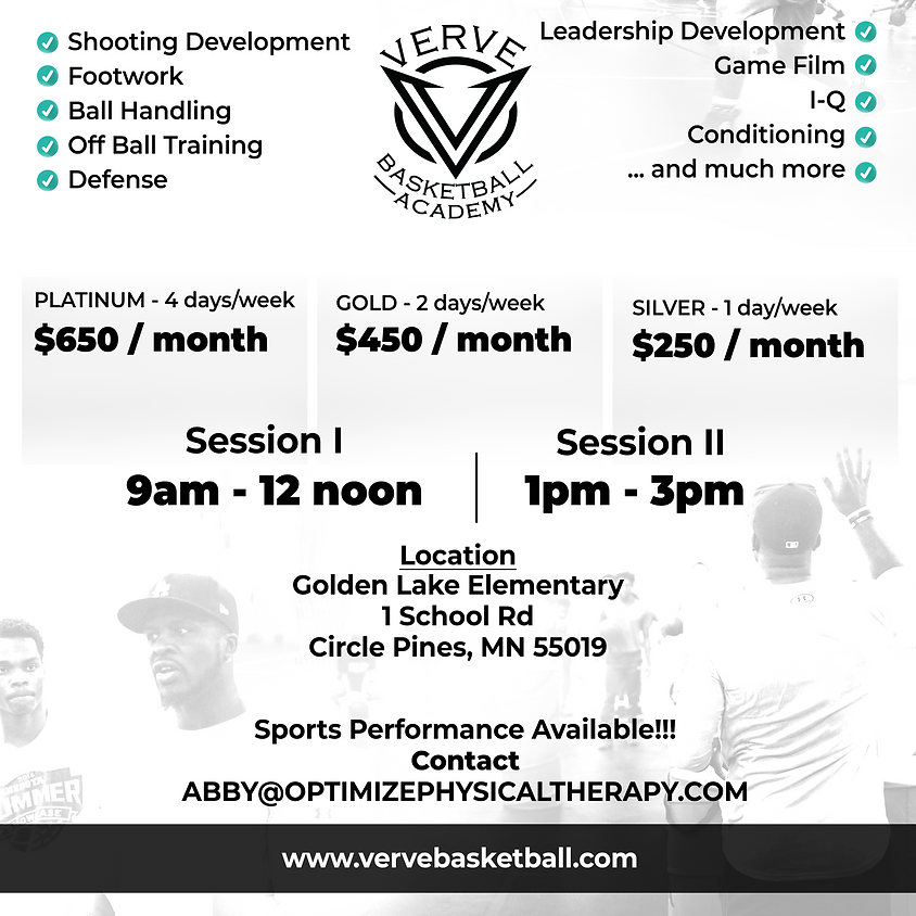 Verve Basketball Summer Training