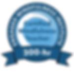 EMI CMT badge large (1).jpg