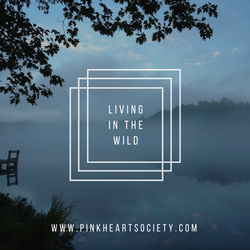 Living In the Wild