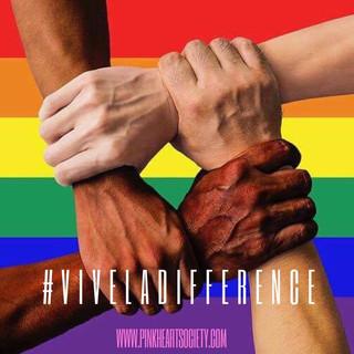 #ViveLaDifference: Diversity in Romance