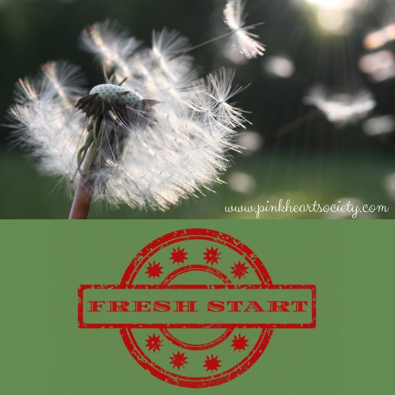 #FreshStart - Kayla Bashe