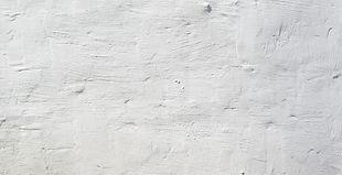GS_White Banner.jpg