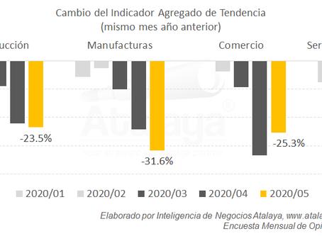 Mayo: las caídas profundas continúan, aunque menos fuertes en el sector terciario