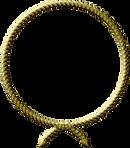 capoeira, paris, cdo, cordao de ouro, mestre chicote