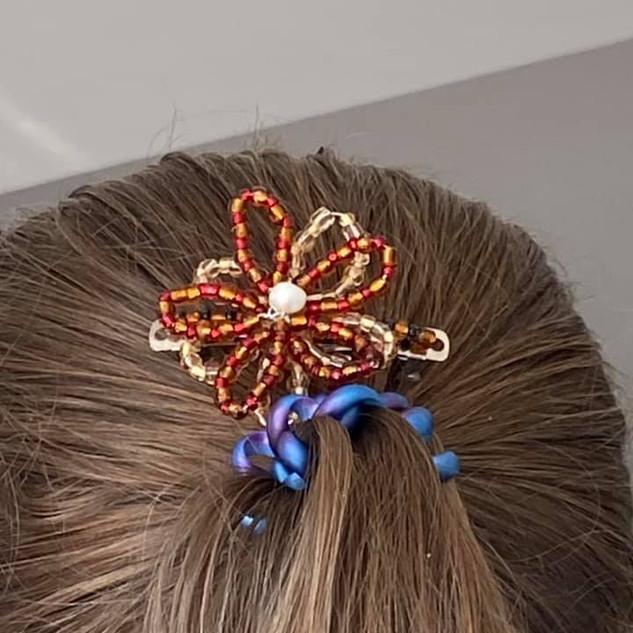 Member's hairclip 2.jpg