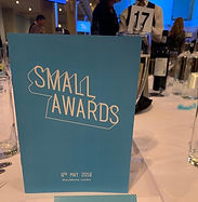 small awards , wnn, finalist, london, excellent serice, mobility scoter,  retail, awards