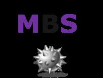 MBS2.png