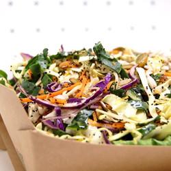 30 shredded health salad_edited