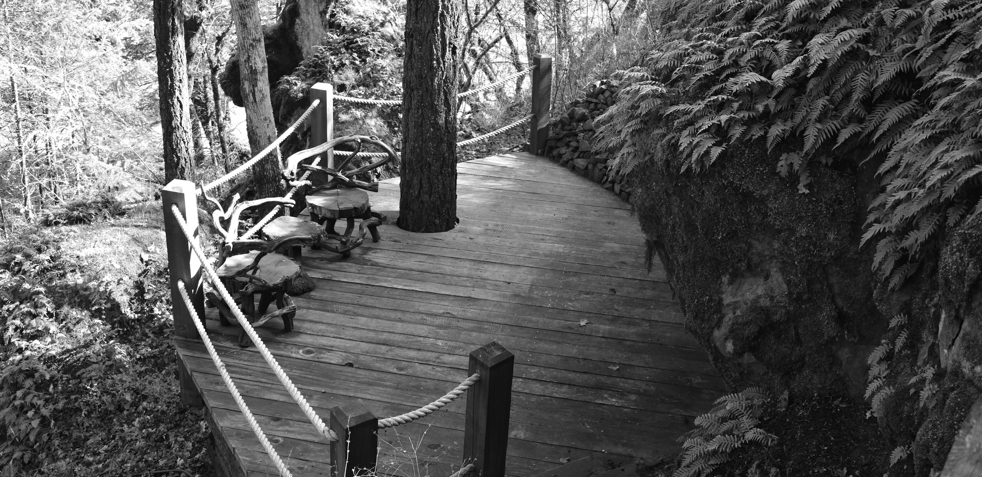 Toni_Woolsey_Trail_Deck