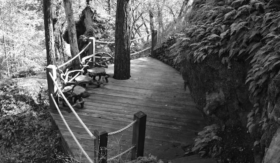 Toni_Woolsey_Trail_Deck
