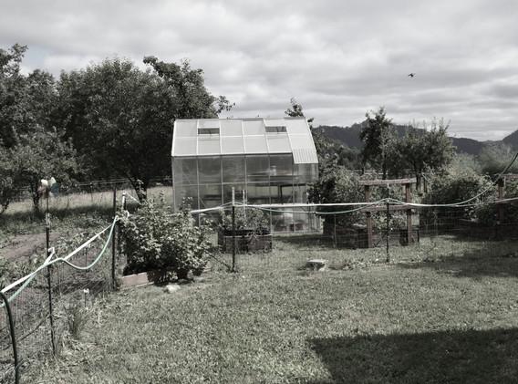 Landowner Clarence Adams orchard garden.