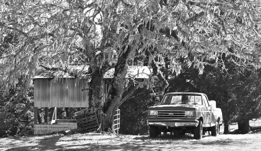 Gow Ranch Douglas County Or.jpg