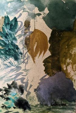 Daintree Rain Forest II  watercolor on p