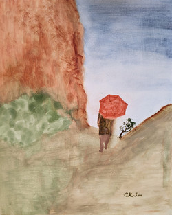 Umbrella at the Needles, Canyonlands, Ut