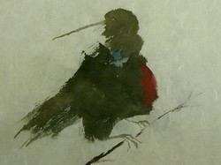 Kingfisher  ink and watercolor on  rice paper