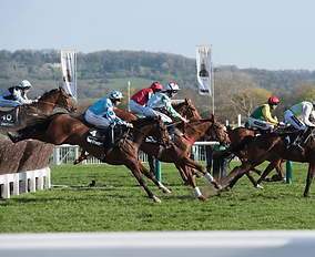 Cheltenham-Races-Featured-Image.png