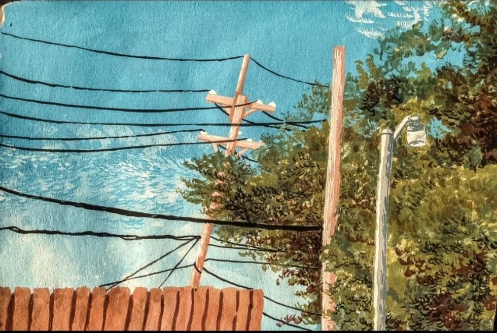 Power lines in the live oak, Old Jefferson