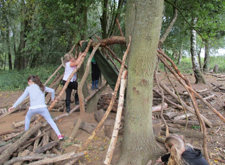 Year 3 and 4 WOW Day at Brandon Marsh Nature Reserve