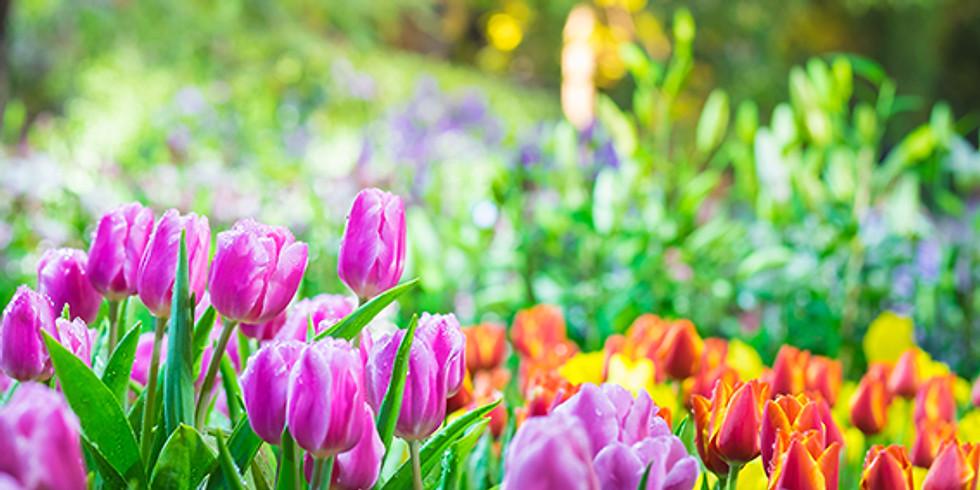 Spring Half Term Holidays