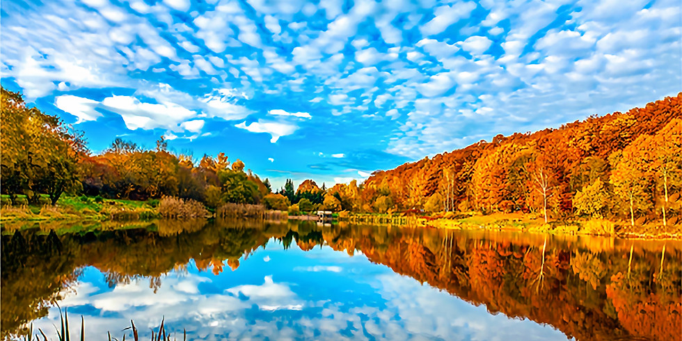 Autumn Half Term Holidays