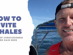 How To Invite Whales with Dr. Dain Heer