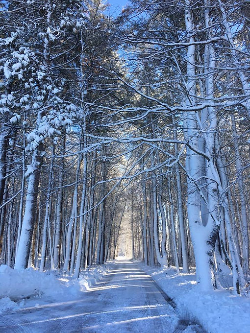 snow maine.jpg