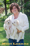 Featuring You - Leanne Dehler - Labradoodles by Leanne