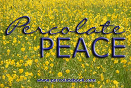 How one person can change the world - Percolate Peace