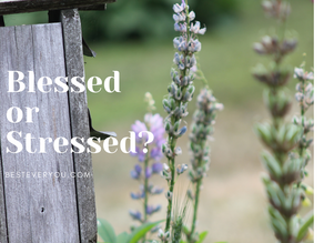 Life With the Zoom Lens On - Do You Feel Stressed or Blessed?