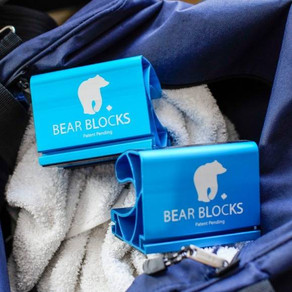 Bear Blocks - Winner - Gold Seal of Excellence