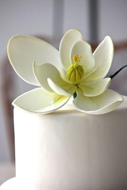 Torta de casamiento con magnolia unica