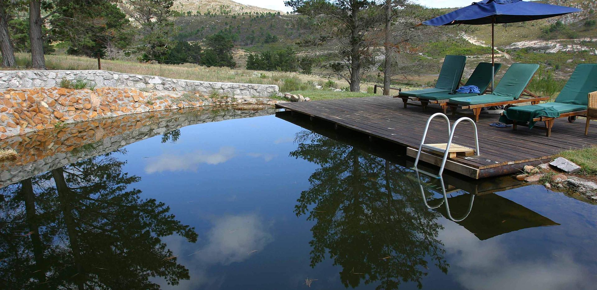 Stone Cottage pool
