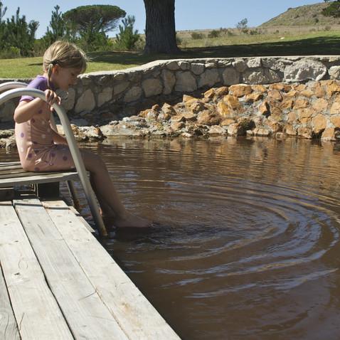 Swimming in the rock pool