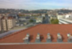 Apiculture Lyon