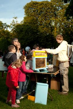 Animation apiculture Lyon