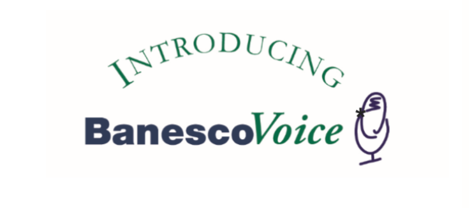 IVR (Interactive Voice Response System)