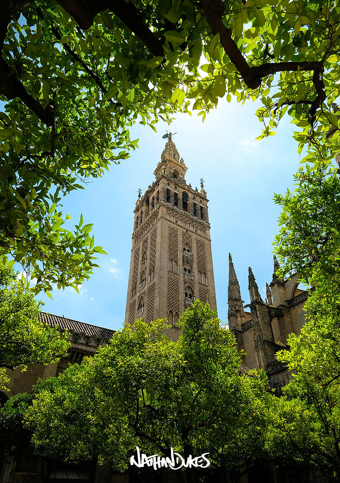 Torre Giralda Seville Sevilla church tower Seville Cathedral Catedral de Sevilla orange grove photography travel adventure by Nathan Dukes Art