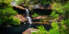 Upper Gledhill Falls Ku Ring Gai National Park waterfall green long exposure landscape photography by Nathan Dukes Art