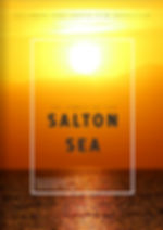JPEG COVER 2 THE JEWELS OF THE SALTON SE