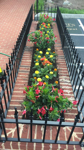 Commerical Landscaping