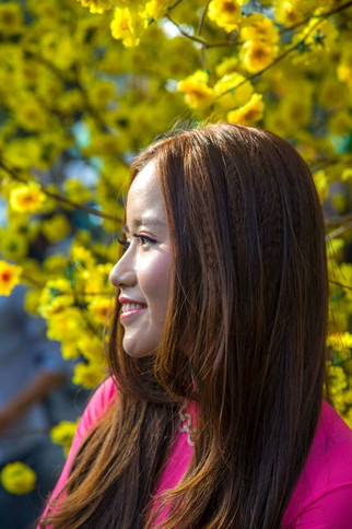 Sur fond jaune