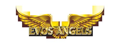 evos-angels-logo-1