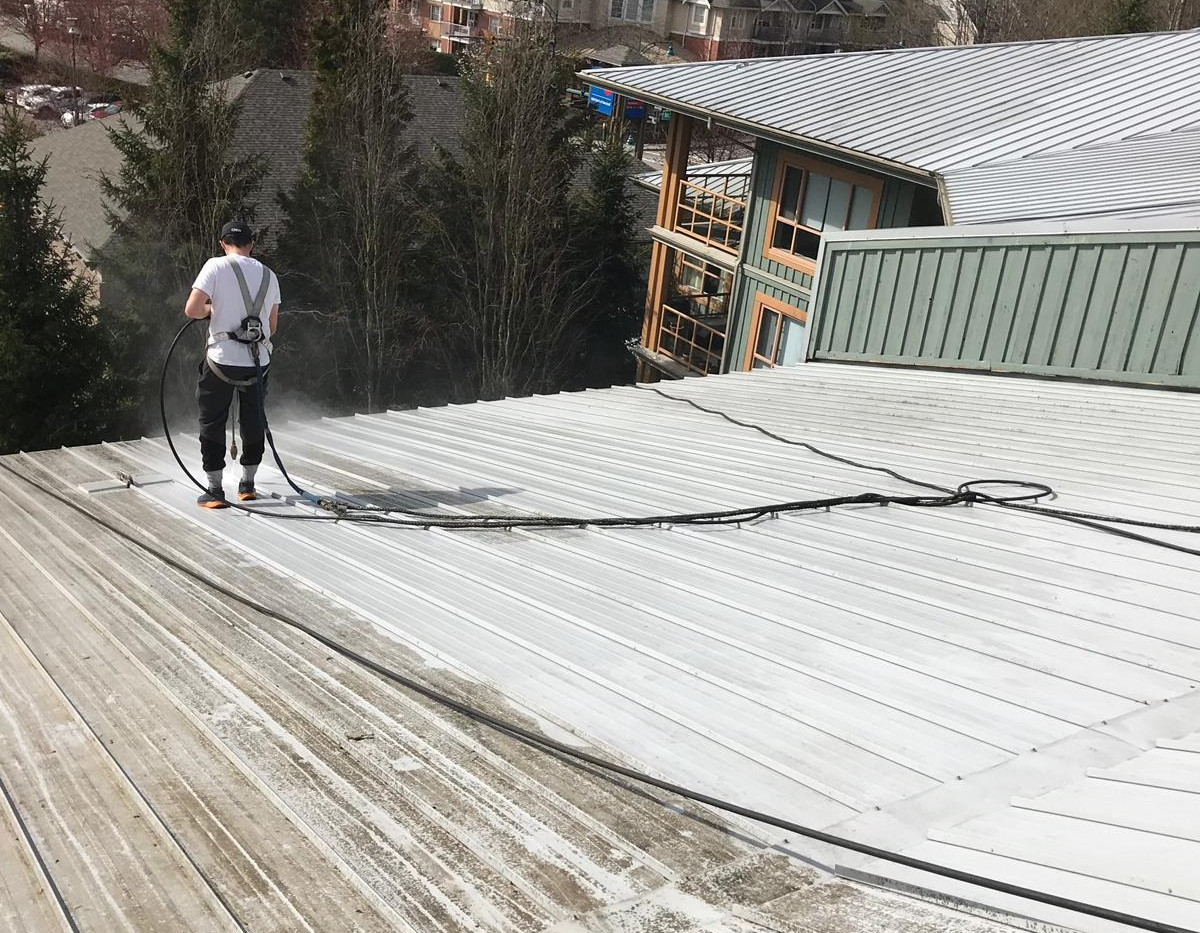 Belcarra%20roof%20cleaning%20shot%20Afte