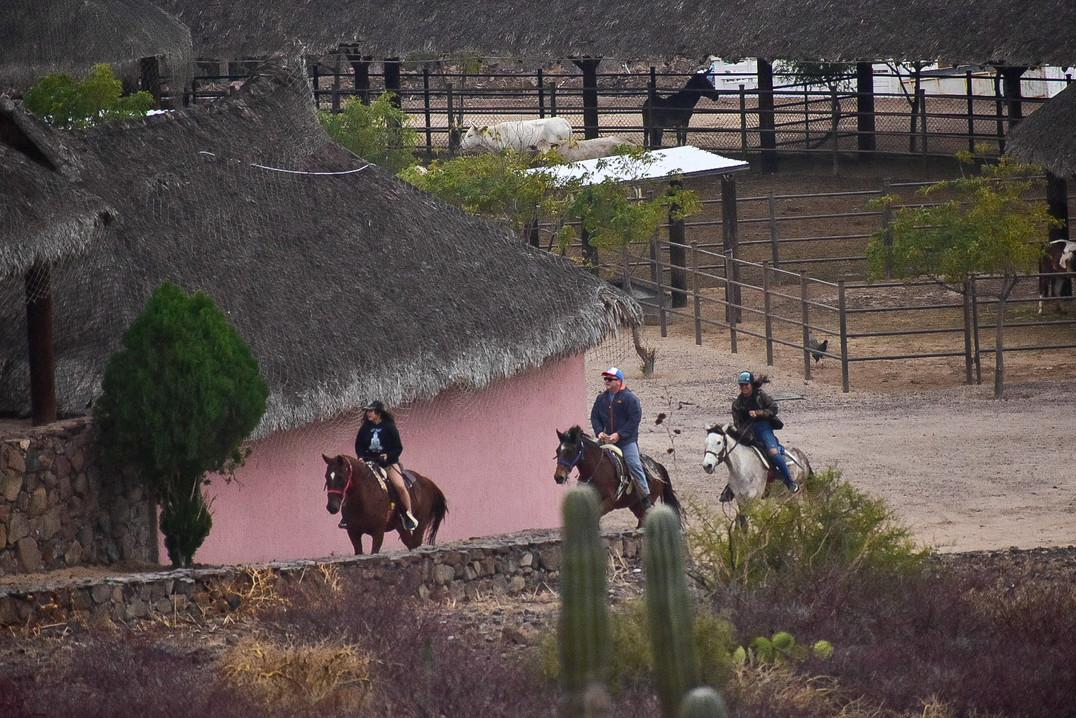 horseback riding in la paz baja californ