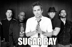 Sugar Ray Super Use.jpg