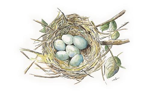 nest print