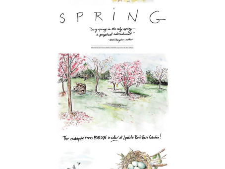Blog 27: SPRING: A perpetual astonishment. And....leave your phone at home. For real.