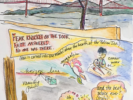 Blog 24: To peel a carrot. To gaze at the bridge. To walk in the Redwoods. To let go of fear.